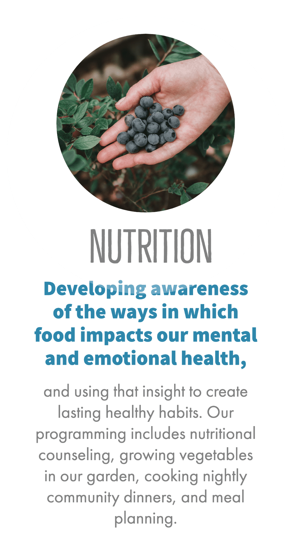 Nutrition Holistic Recovery